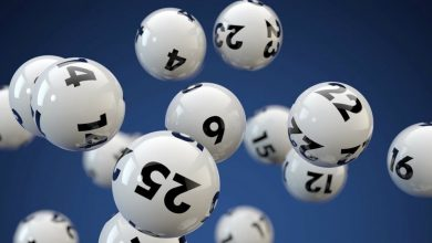 sports lottery and welfare lottery