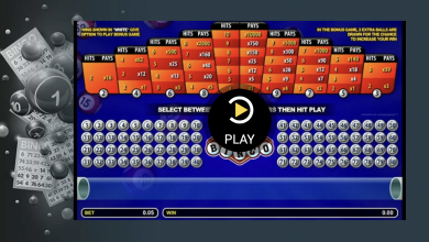 Can I play bingo games at a casino online?